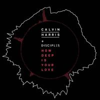 Calvin Harris & Disciples - How Deep Is Your Love (Astero Edit)