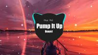 Danzel - Pump it up (Tik Tok remix)